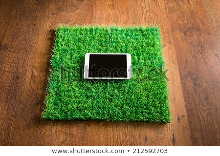 Tablet on artificial grass tile Stock photo © stokkete