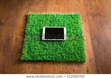 keményfa · csempe · padló · lakóövezeti · otthon · konyha - stock fotó © stokkete