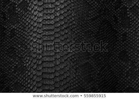 Piros krokodil bőr textúra terv keret Stock fotó © tungphoto
