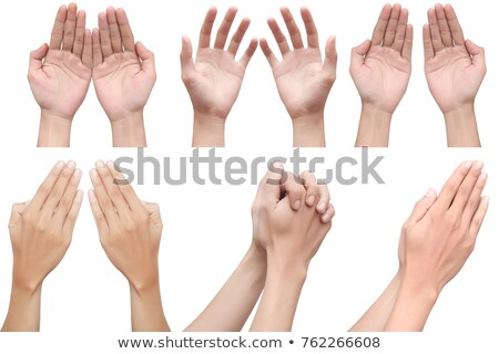 Hands clasped together for a prayer  isolated on a white background Stock photo © deandrobot