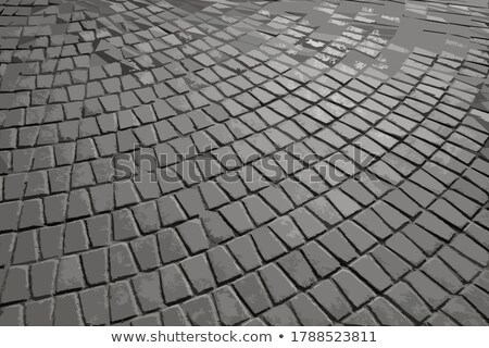 Gray Paving Slabs in the Form Trapezoids. Stock photo © tashatuvango