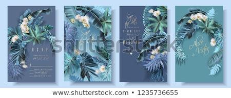 Esküvői meghívó keret orchideák kép illusztráció rózsaszín Stock fotó © Irisangel