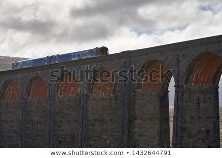 дизельный · поезд · природы · фотографии · декораций · груза - Сток-фото © patrimonio
