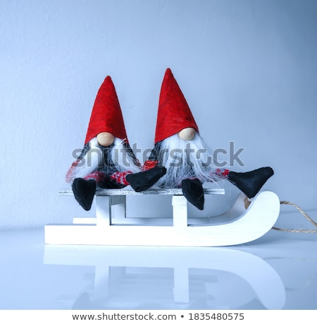 Pair of dwarves Stock photo © filipw