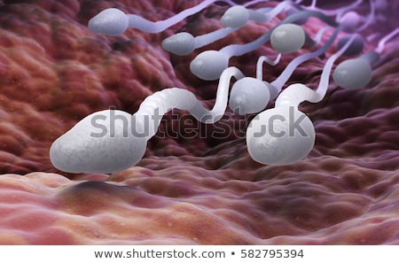 sperm stock photo © 7activestudio