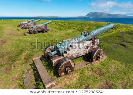 Vecchio cannone storico fortezza Danimarca Foto d'archivio © Arrxxx
