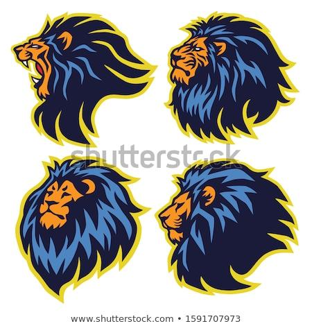 Machtig collectie Blauw vector icon ontwerp Stockfoto © rizwanali3d