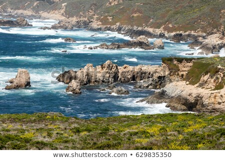 pacific ocean from garrapata state park monterey coast central california stock photo © yhelfman