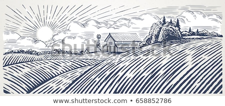 Farm landscape. Engraved Color Vector Illustration. Stock photo © ConceptCafe