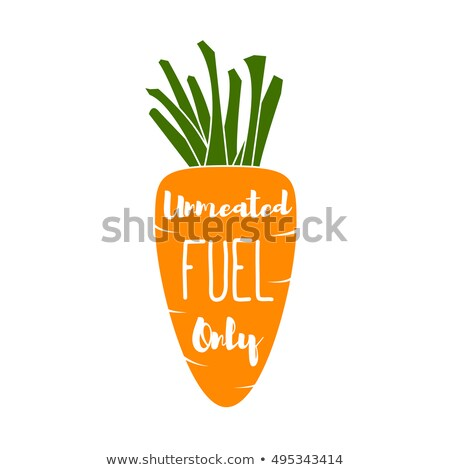 Vegatable Fuel Only - Cocept. doodle - Carrot. Vector Illustration Stock photo © khabarushka