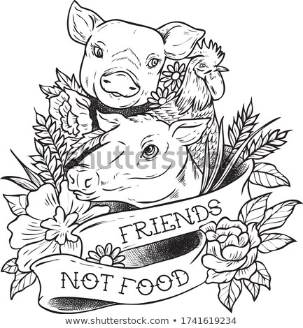 Friends not food Stock photo © zsooofija