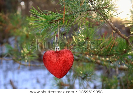 red heart in the snow stock photo © viperfzk