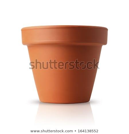 empty terracotta pots Stock photo © Klinker