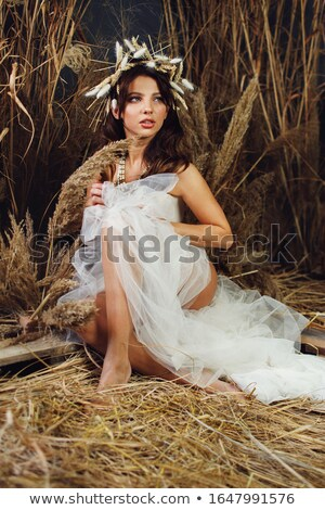 Portrait of an attractive brunette wearing a stylish chaplet Stock photo © majdansky