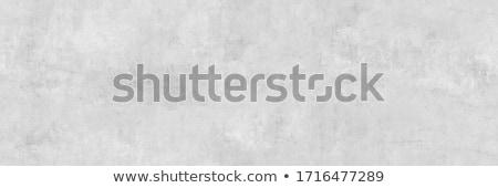 Light gray concrete wall surface background Stock photo © stevanovicigor
