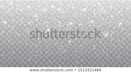 chutes · de · neige · transparent · fond · lumière · effet - photo stock © orensila