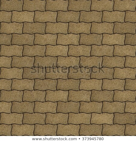 Sand Color Paving Slabs as Wavy Parallelograms. Stock photo © tashatuvango