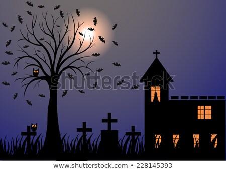 Kerkhof scène vampier illustratie kunst leuk Stockfoto © bluering