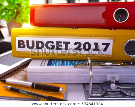 Yellow Office Folder with Inscription Budget 2017 Stock photo © tashatuvango
