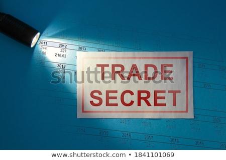 Kart dosya sırları 3D Klasör Stok fotoğraf © tashatuvango
