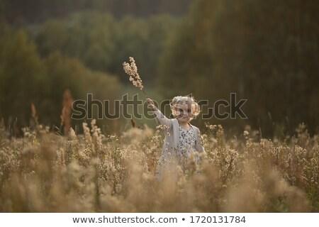 Portret dziewczyna dziedzinie kobieta zabawy kolor Zdjęcia stock © IS2