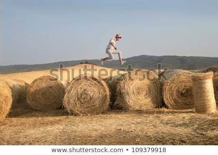 Young boy on hay bale Stock photo © IS2