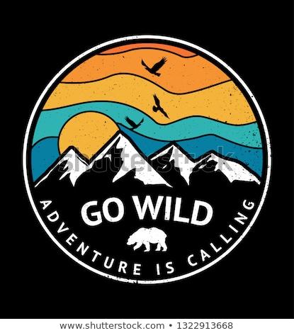 Szabadtér hegy expedíció tipográfia kaland logo Stock fotó © Andrei_