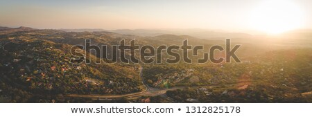 pond and green forest in tropical south africa Stock photo © compuinfoto