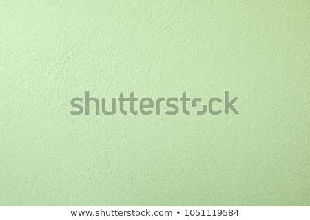Pasztell zöld fal textúra közelkép Stock fotó © zkruger
