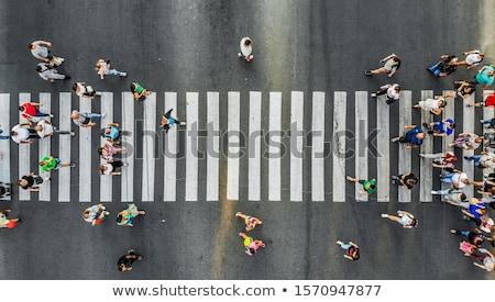 通り · 現代 · 空っぽ · 市 · シマウマ · 町 - ストックフォト © rogistok