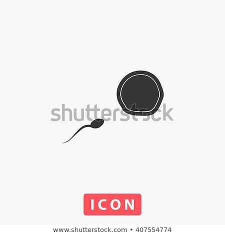 精子 · 卵 · 男性 · 女性 · 家族 · モデル - ストックフォト © blaskorizov