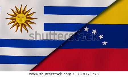 Zwei Fahnen Argentinien Venezuela isoliert Stock foto © MikhailMishchenko
