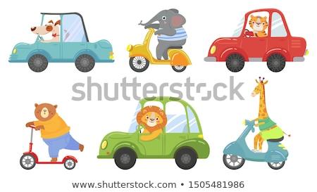 Tigre équitation ville illustration route enfant Photo stock © colematt