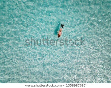 Beautiful woman with mask and flippers for snorkeling on the beach Stock photo © galitskaya