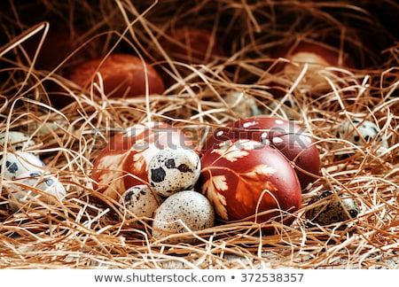 Easter eggs dyed with onion peels and quail eggs Stock photo © madeleine_steinbach