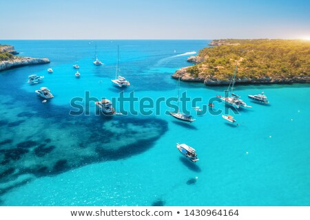 Aerial view of boats and luxury yachts in transparent blue sea Stock photo © denbelitsky