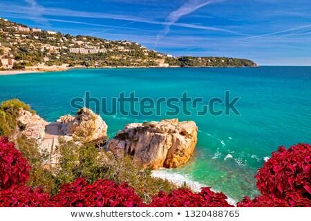 Kapak Monaco akdeniz sahil görmek güney Stok fotoğraf © xbrchx