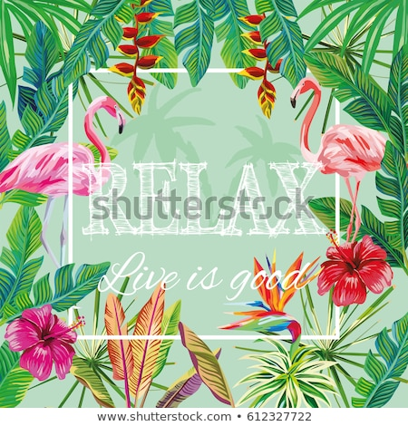 Happy Summer card of flamingo and tropical plant Stock photo © cienpies