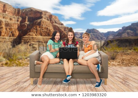 friends with laptop on sofa over grand canyon Stock photo © dolgachov