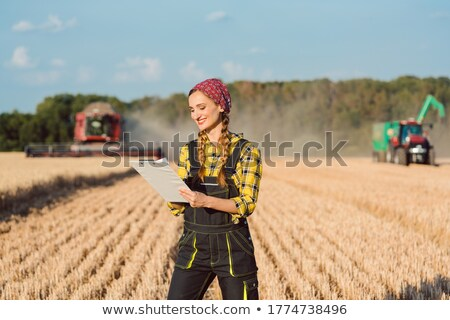 Stok fotoğraf: Farmer On The Wheat Field Doing Bookkeeping On The Ongoing Harvest