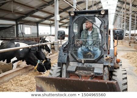 Trabalhador em pé trator limpeza corredor animal Foto stock © pressmaster