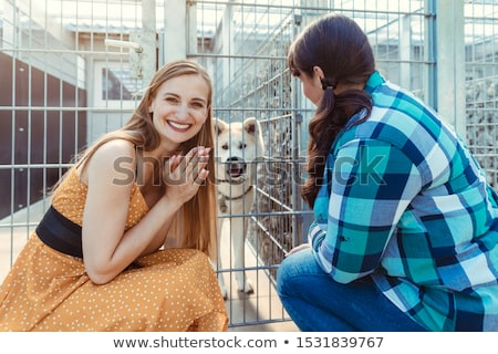 Woman adopting a dog in the animal shelter, eagerly waiting Stock photo © Kzenon