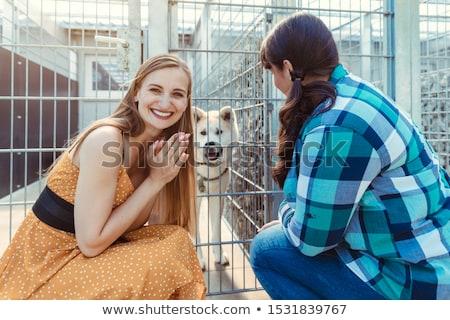 Mulher cão animal abrigo espera novo Foto stock © Kzenon