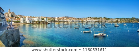 Houses on the seafront, Cadaques, Spain Stock photo © borisb17