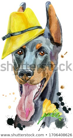 Watercolor portrait doberman with yellow hat and freesia Stock photo © Natalia_1947