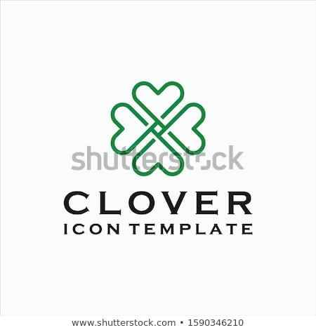 Soyut kalp şekli yonca vektör yeşil eğlence Stok fotoğraf © rioillustrator