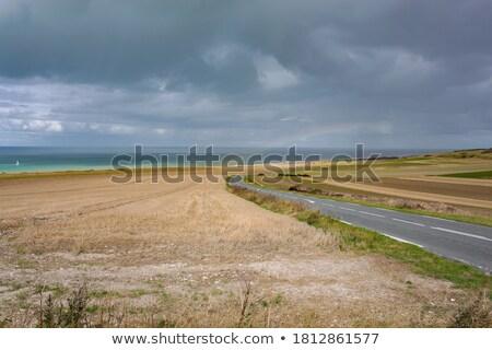 parc and ocean Stock photo © xedos45