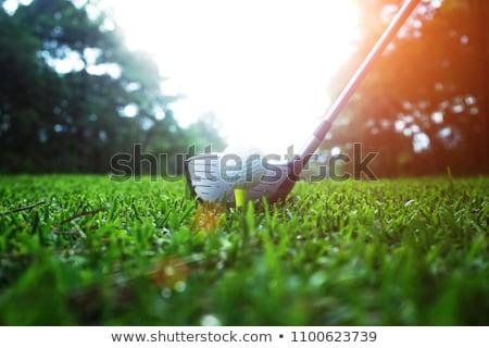 Golf torneo ilustración fondo hombres silueta Foto stock © adrenalina