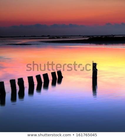 nightfall in camargue provence france stock photo © phbcz