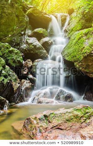 Pequeno cachoeira floresta água primavera paisagem Foto stock © Kayco